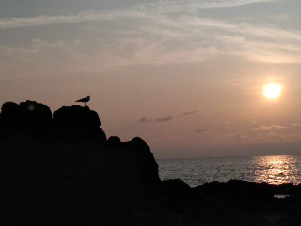 夕方の海は落ち着く