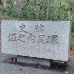 ブログ記事の収益アップ!散歩で【セロトニン増加】