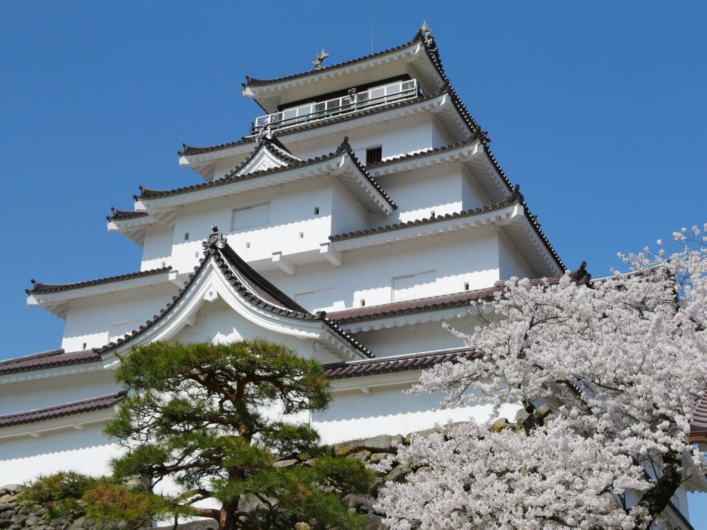 會津 鶴ヶ城 5月の桜が満開の時期